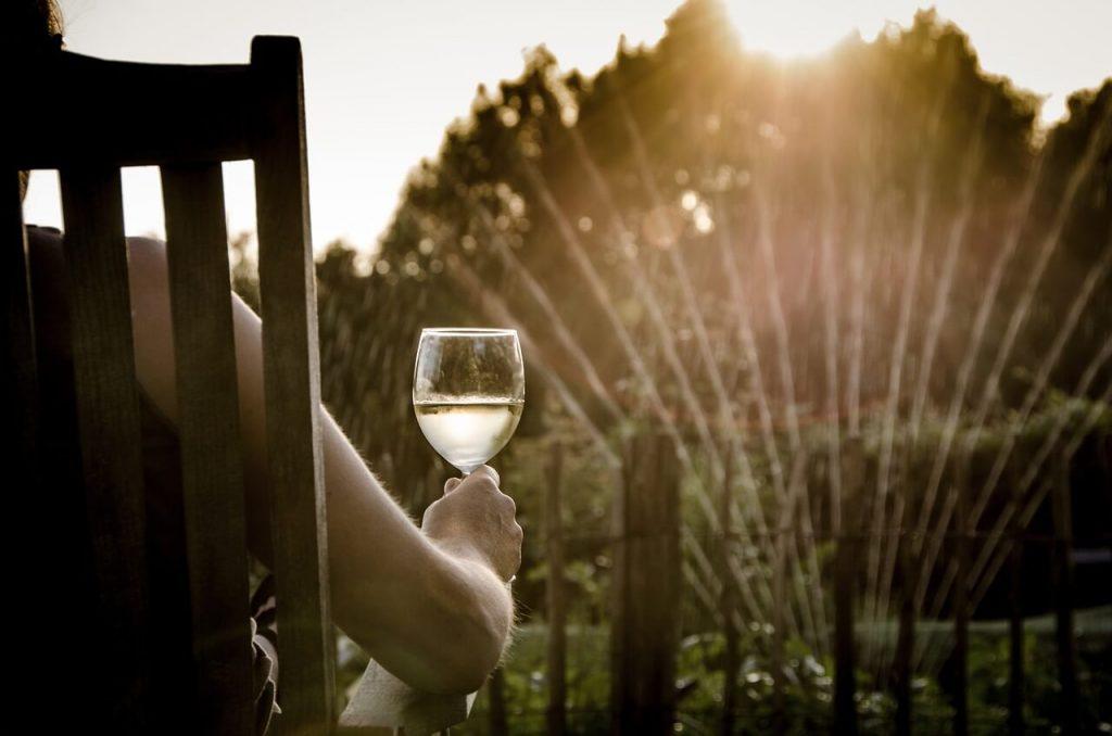 07072016 - 3 conseils naturopathie pour une remise en forme pendant les vacances - Vins bio