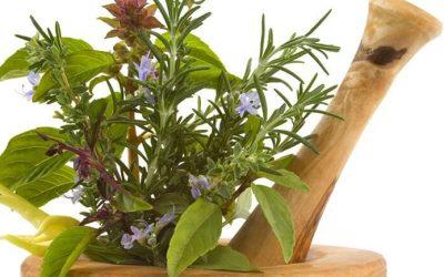 La santé naturelle en pharmacie