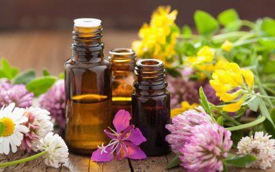 Un antibiotique aux huiles essentielles, une révolution naturelle majeure