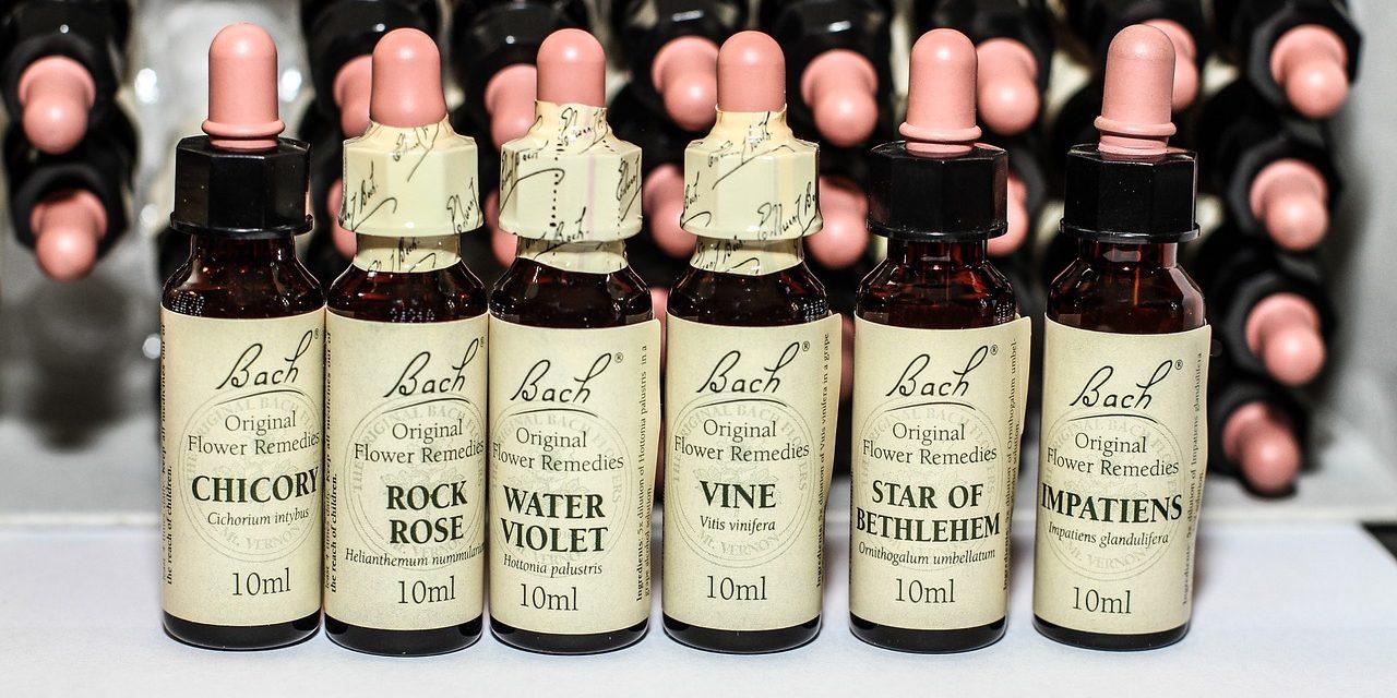 Les Fleurs de Bach, ou comment retrouver la santé