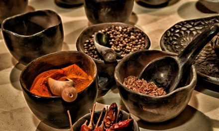 Ayurveda, une approche complémentaire à la naturopathie