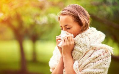 Les allergies saisonnières : définition et symbolique, causes, solutions et traitements