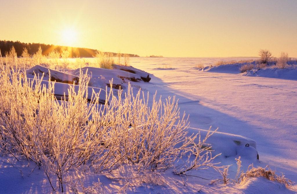 ayurveda-hiver