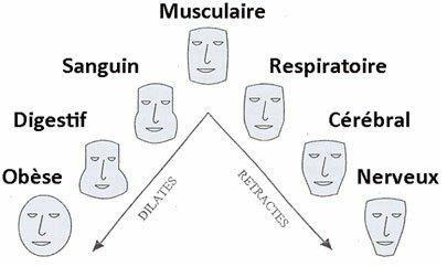 morphotype