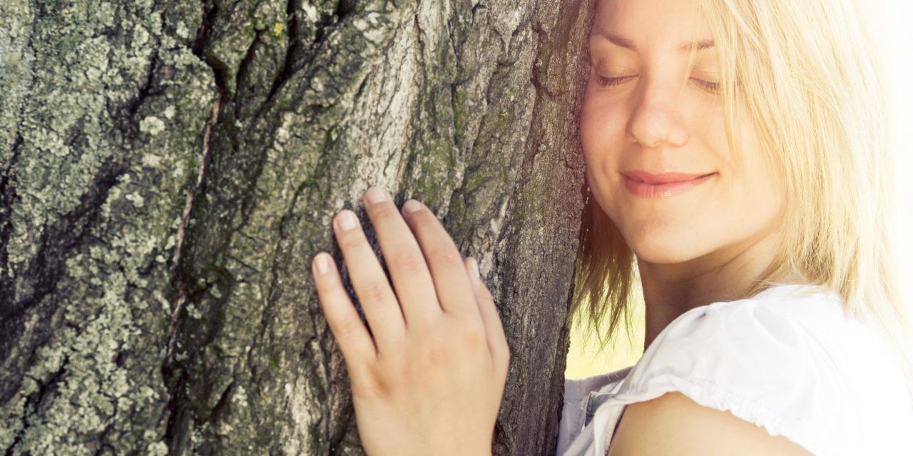 Les bienfaits santé de la forêt par le bol d'air Jacquier